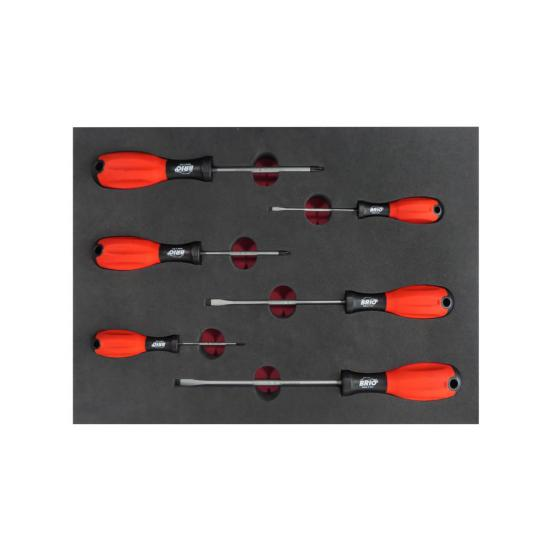 6 Piece Screwdriver Set with Foam Inlet
