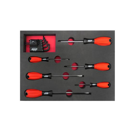 13 Piece Allen Torx, Phillips and Flat Head Screwdriver Set with Foam Inlet